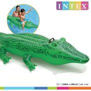 Lil Gator Ride On